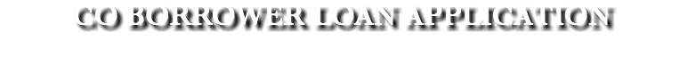 CO BORROWER LOAN APPLICATION